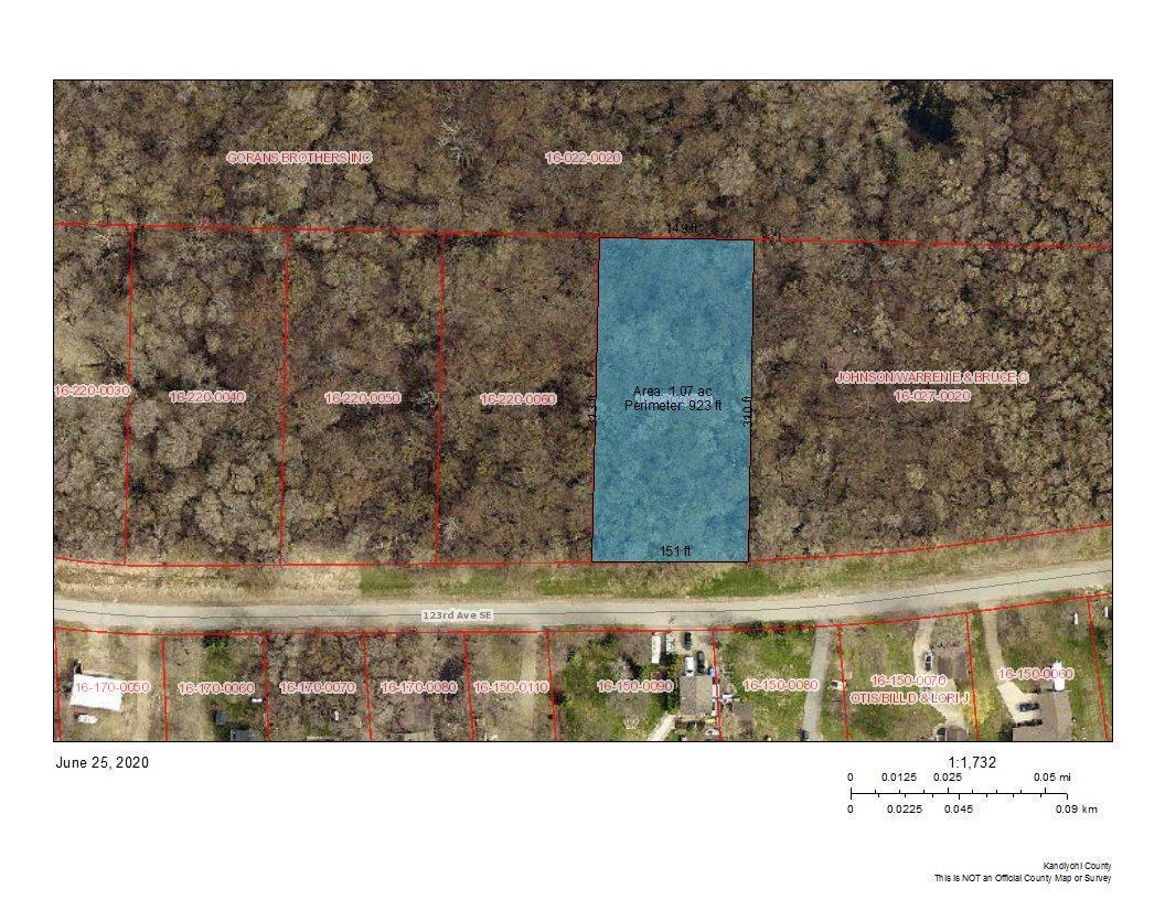 xxx 123rd SE Property Photo - Lake Lillian, MN real estate listing