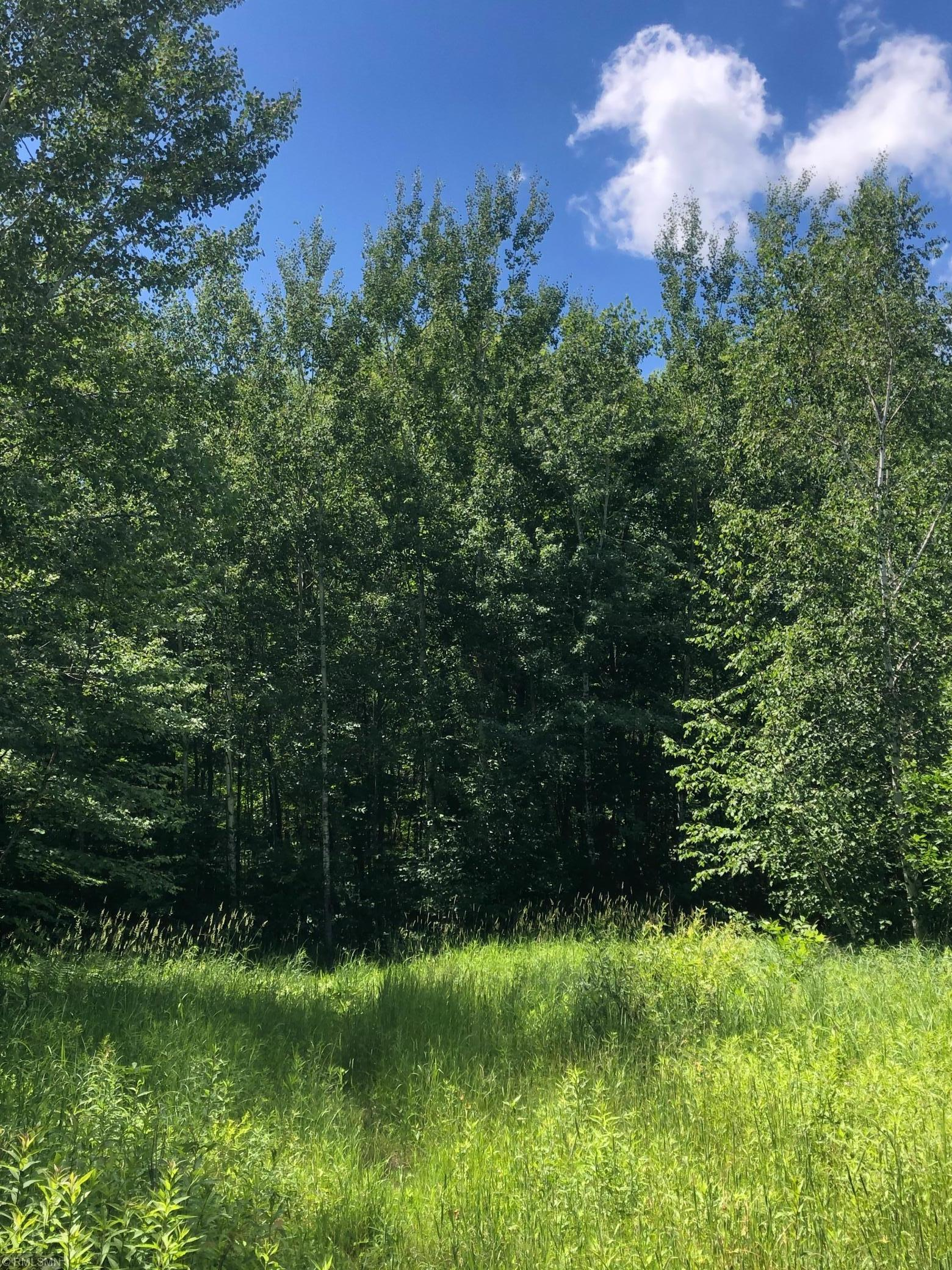 xxx Olson Rd Property Photo - Hinckley, MN real estate listing