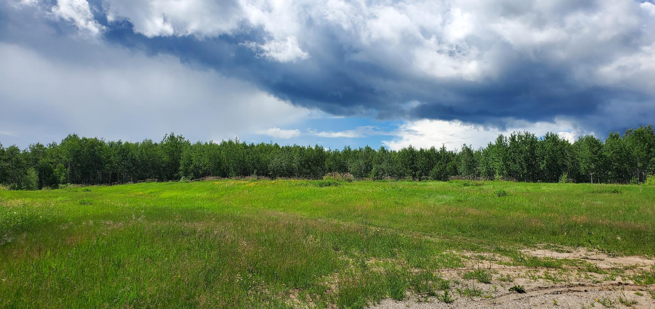 TBD HWY 169 Property Photo - Bovey, MN real estate listing
