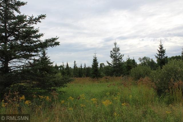 TBD Hergard Samuelson Road Property Photo - Deer River, MN real estate listing