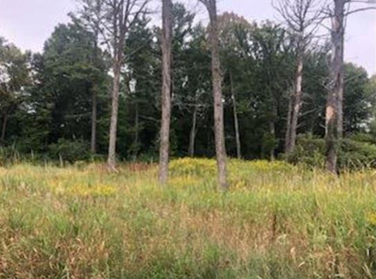 Lot 39 Sunflower Way Property Photo - Amery, WI real estate listing