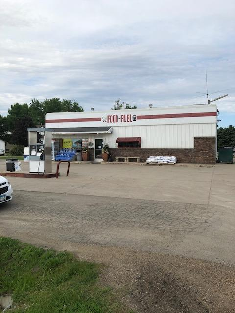 867 & 855 State Highway 22 Property Photo - Minnesota Lake, MN real estate listing