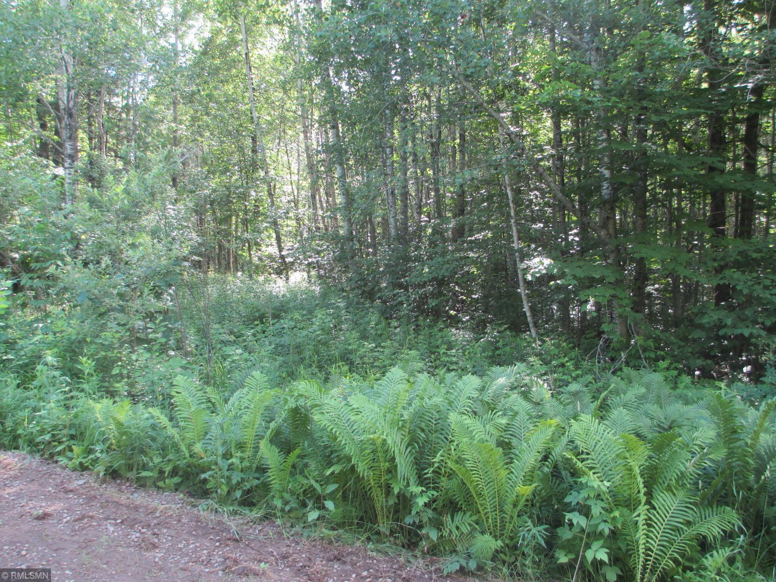 xxx Reuben Johnson Road Property Photo - Kalevala Twp, MN real estate listing