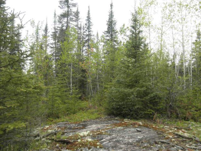 XXX Muckwa Lake Road Property Photo - Babbitt, MN real estate listing