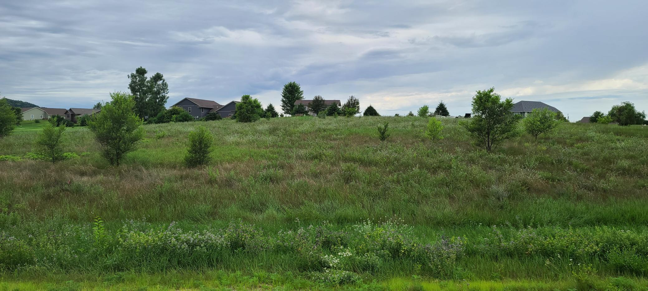 Lot 23 Larkspur Rd Property Photo - Trempealeau Twp, WI real estate listing