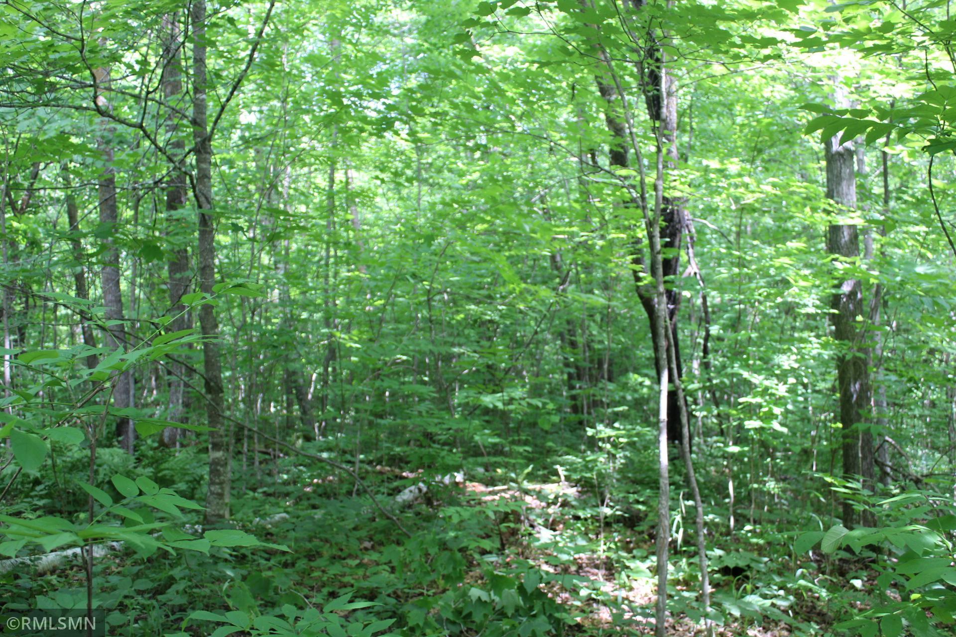 36xyz Munkelwitz Road Property Photo - Isle, MN real estate listing