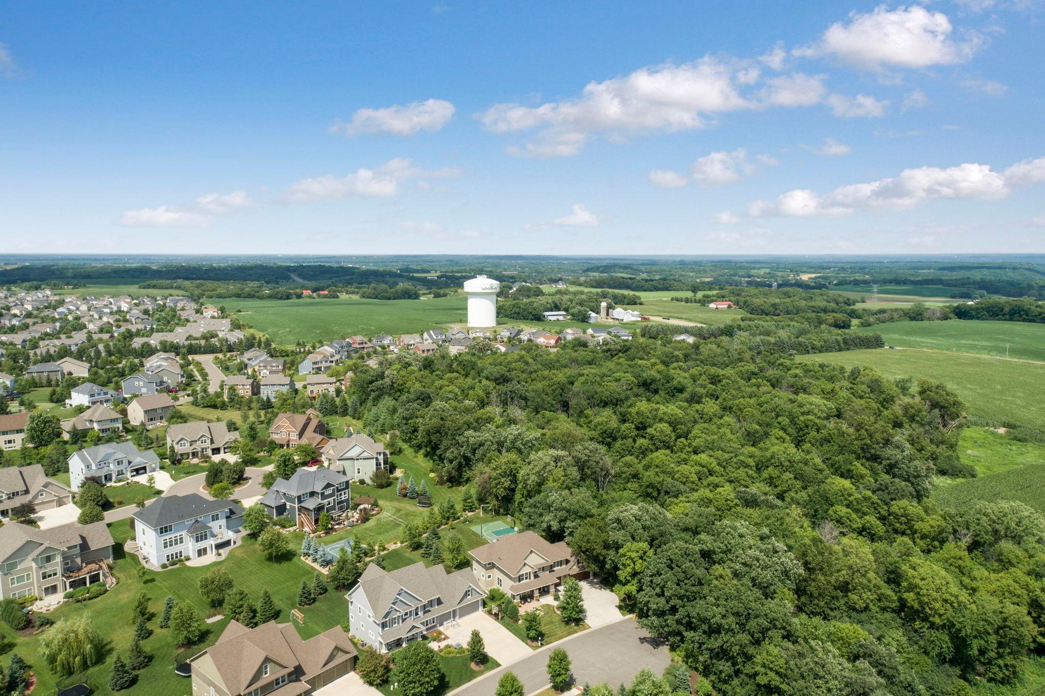 11732 Aster Lane Property Photo - Woodbury, MN real estate listing