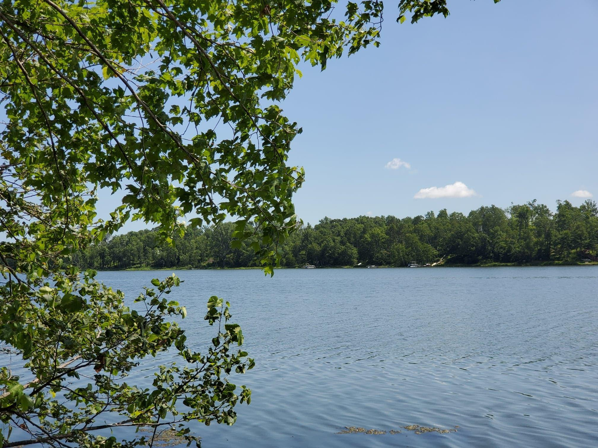1770 White Ash Property Photo - Apple River Twp, WI real estate listing
