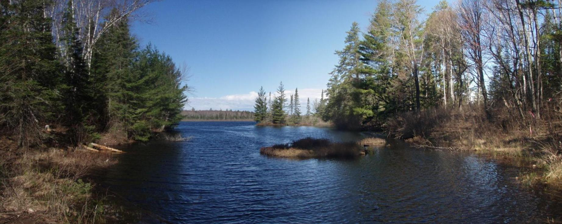 XXX Saari Land Rd Spruce Lake Property Photo - Babbitt, MN real estate listing