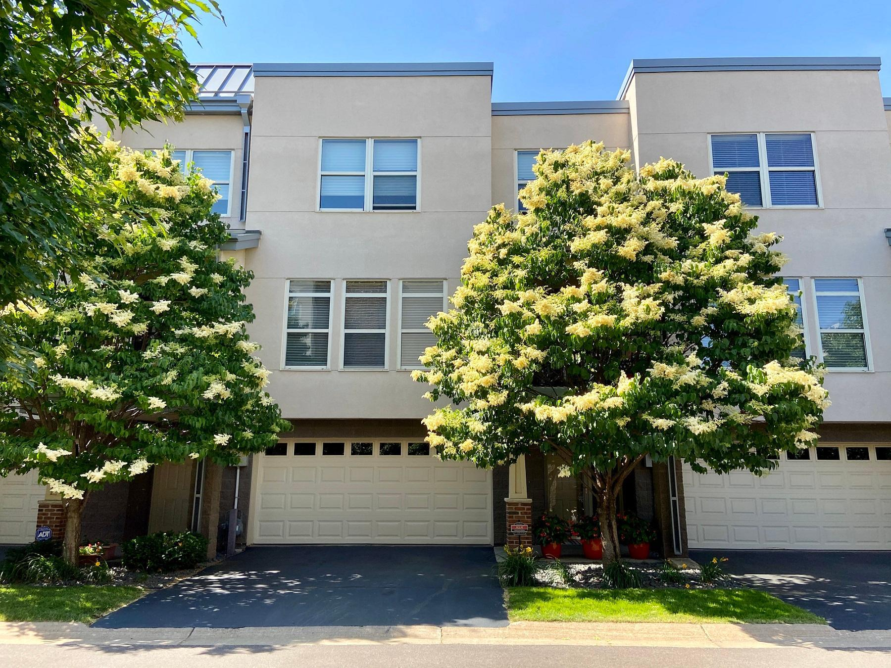 221 1st Avenue NE #31 Property Photo - Minneapolis, MN real estate listing