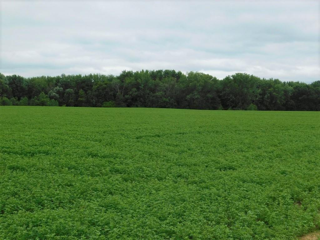 W25051 US Highway 10 Property Photo - Albion Twp, WI real estate listing