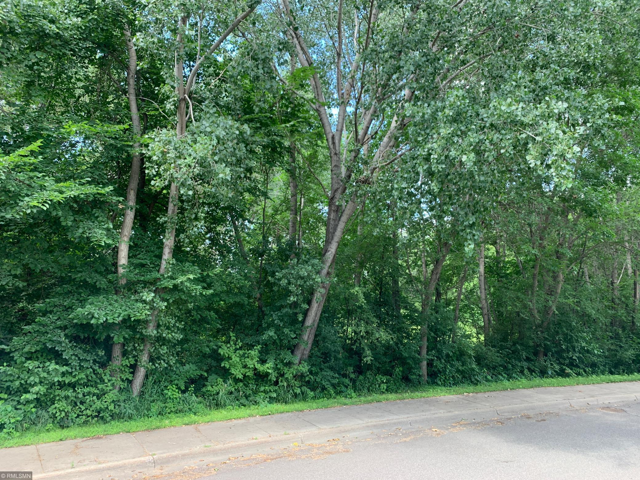 50 Unassigned Address Property Photo - Champlin, MN real estate listing