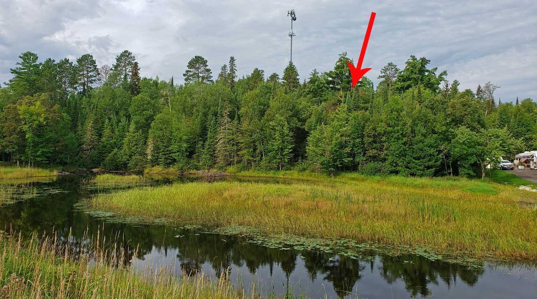 TBD Crane Lake Rd Property Photo - Crane Lake, MN real estate listing