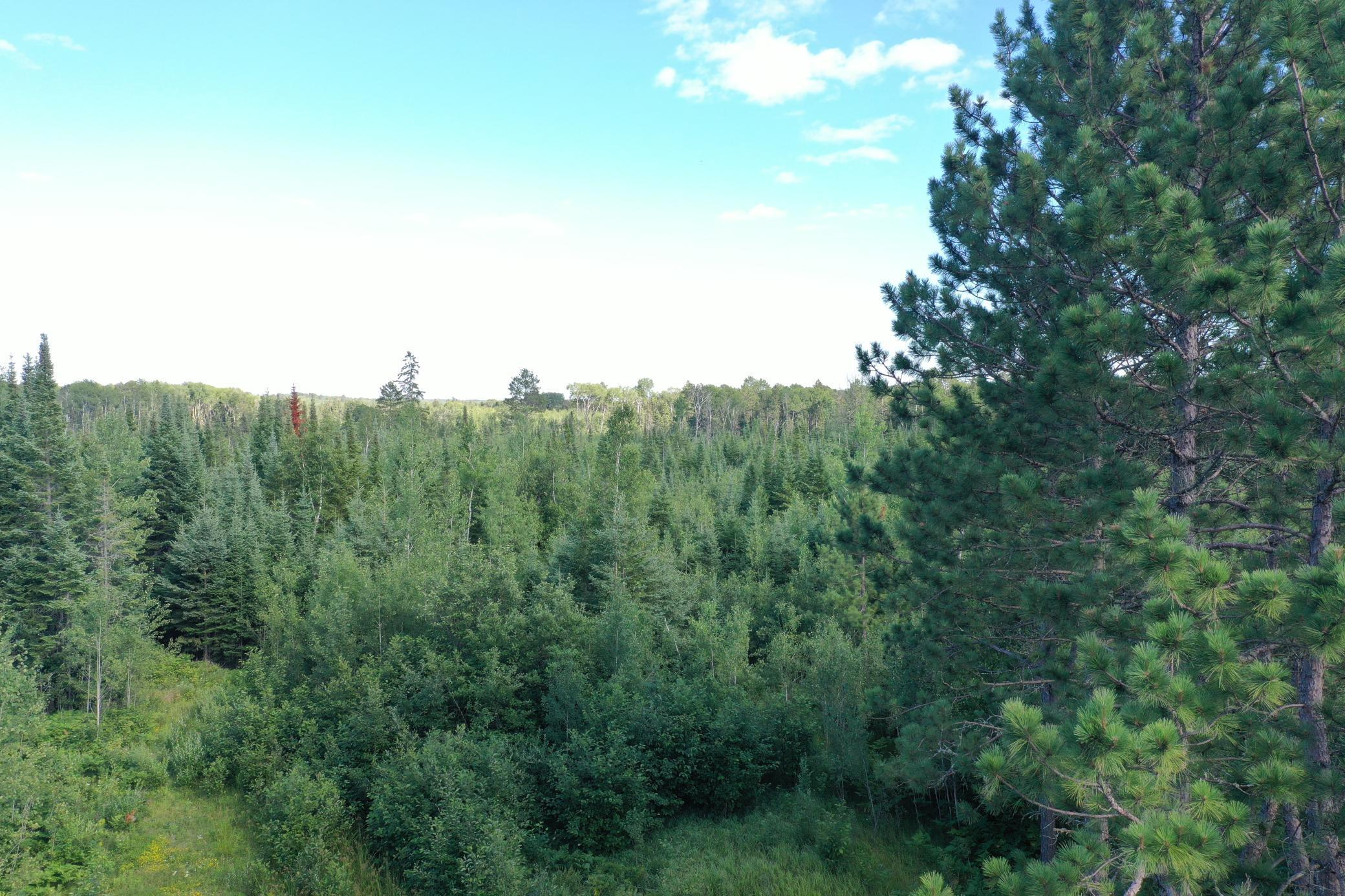 TBD HWY 73 Property Photo - Chisholm, MN real estate listing