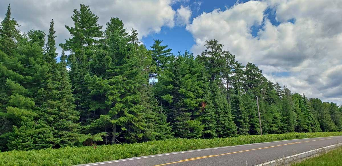 TBD Highway 68 Property Photo - Sandy Twp, MN real estate listing