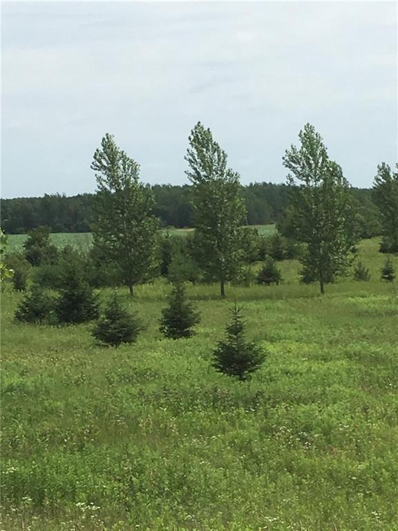 0 Cadle Property Photo - Bashaw Twp, WI real estate listing