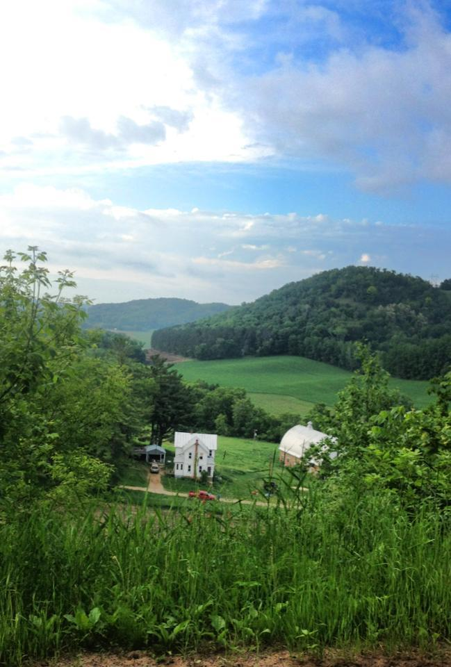 S898 Center Creek Road Property Photo - Nelson, WI real estate listing