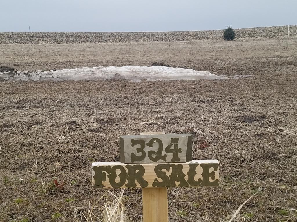 324 Railroad Street Property Photo - Utica, MN real estate listing