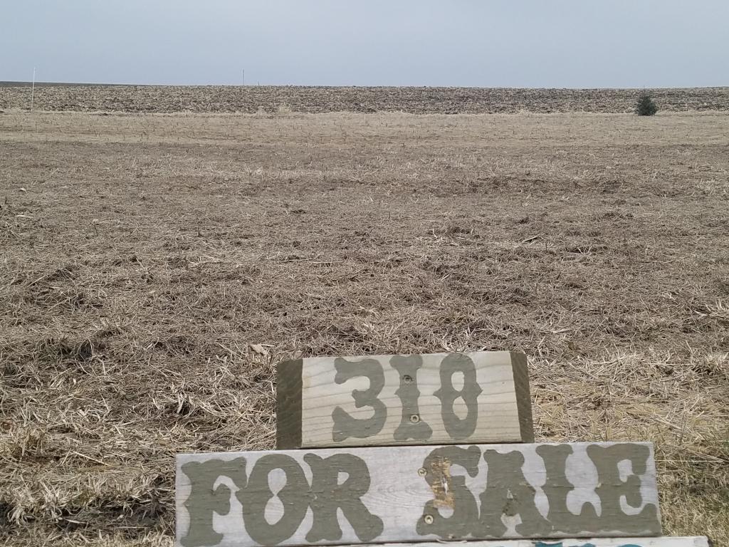 318 Railroad Street Property Photo - Utica, MN real estate listing