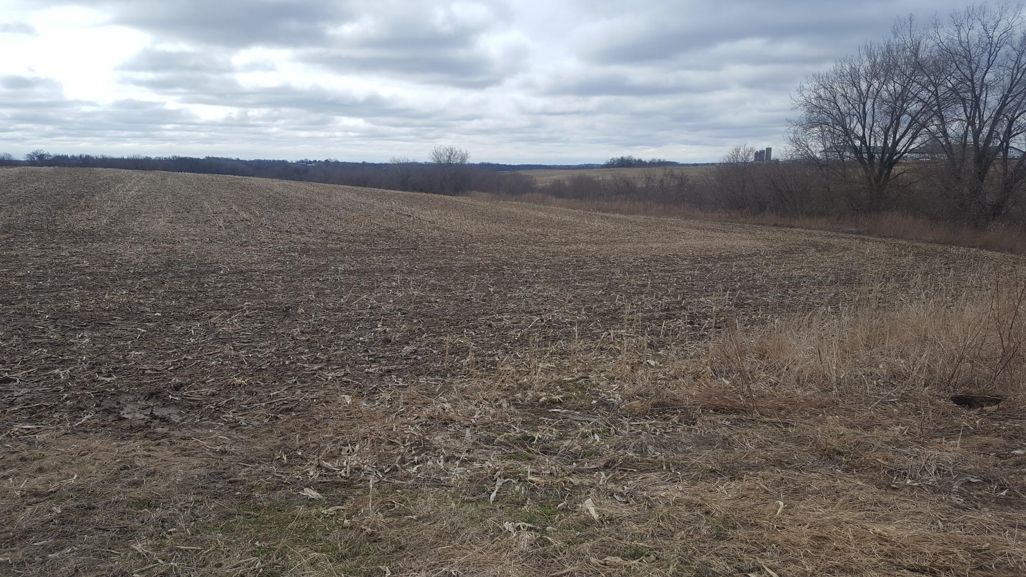 XXX Wilson Frontage Drive Property Photo - Winona, MN real estate listing