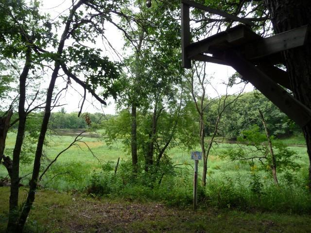 TBD County Road 11 Property Photo - Crosby, MN real estate listing