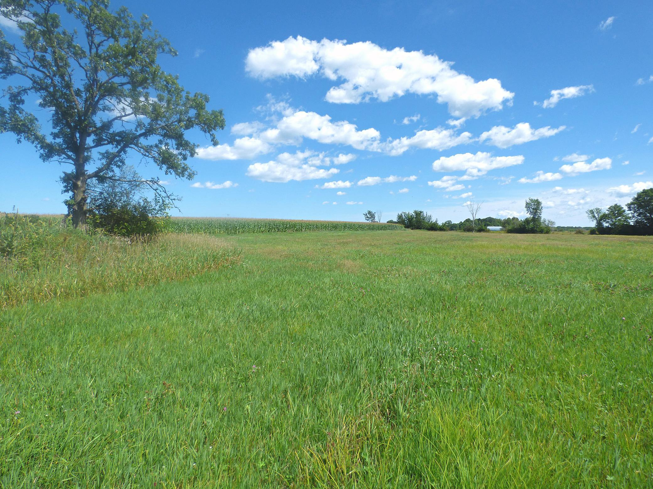 TBD Hwy 25 Property Photo - Buh Twp, MN real estate listing