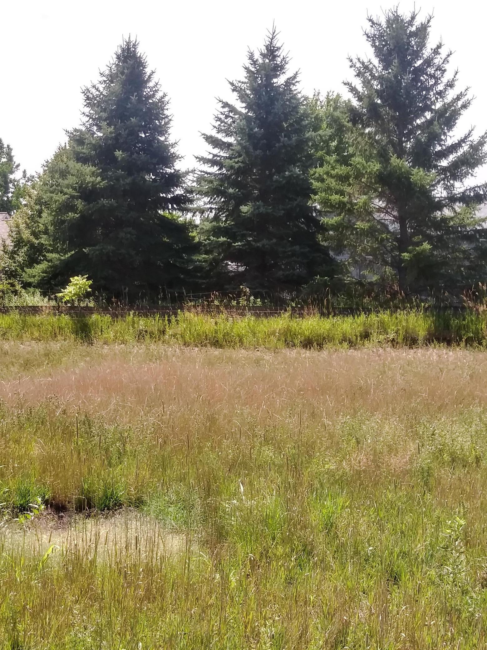 1806 Laramee Lane Property Photo - Centerville, MN real estate listing