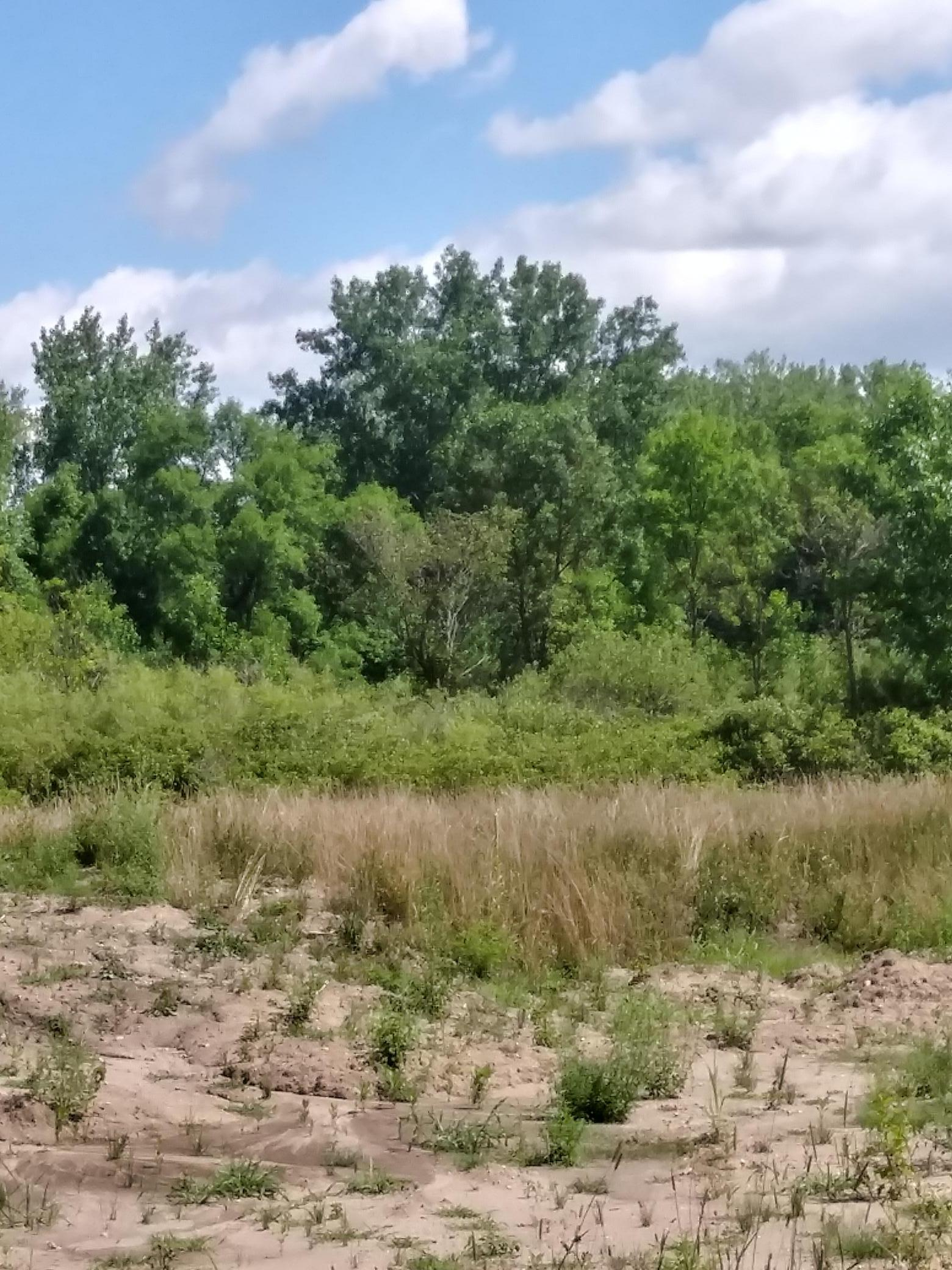 1832 Laramee Lane Property Photo - Centerville, MN real estate listing