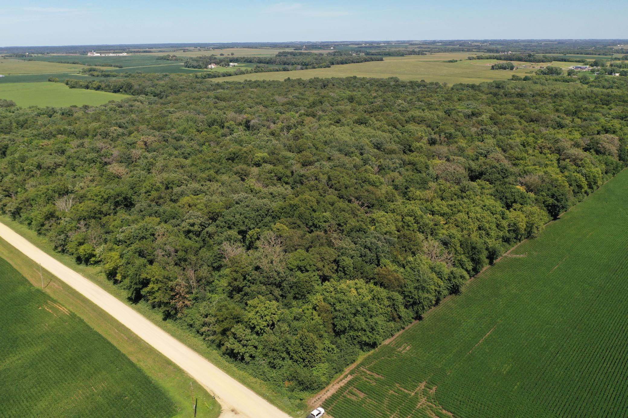 TBD 20th Avenue Property Photo - Holden Twp, MN real estate listing
