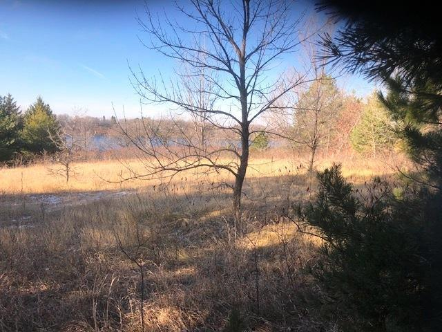 XXX Co Rd 23 SE Property Photo - Hudson Twp, MN real estate listing