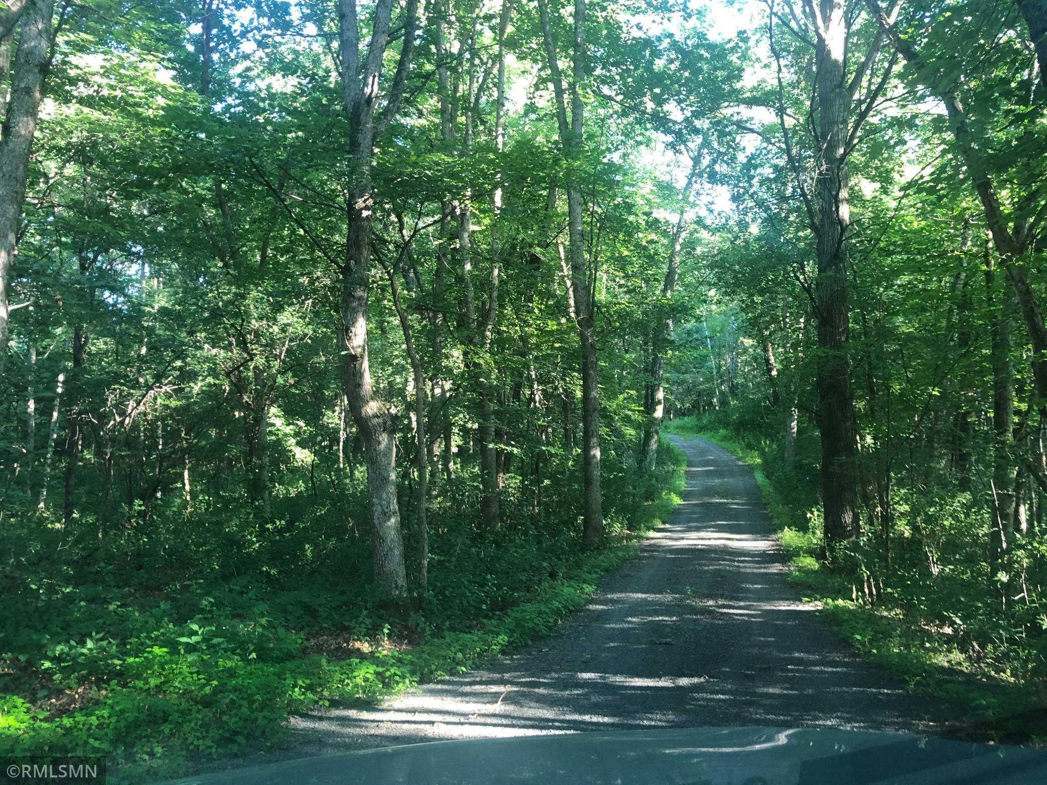 XXX Old Guslander Trail N Property Photo - May Twp, MN real estate listing