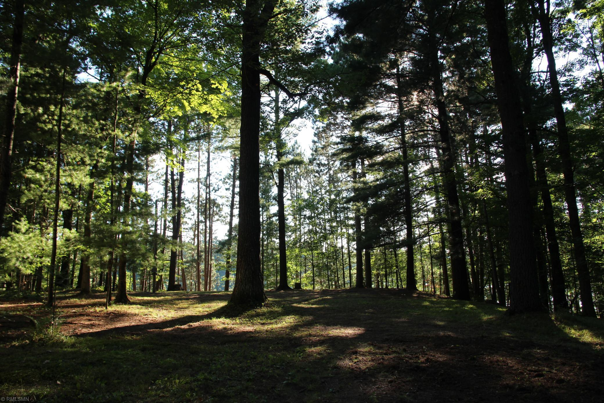 2545 9 3/4 Avenue Property Photo - Chetek Twp, WI real estate listing