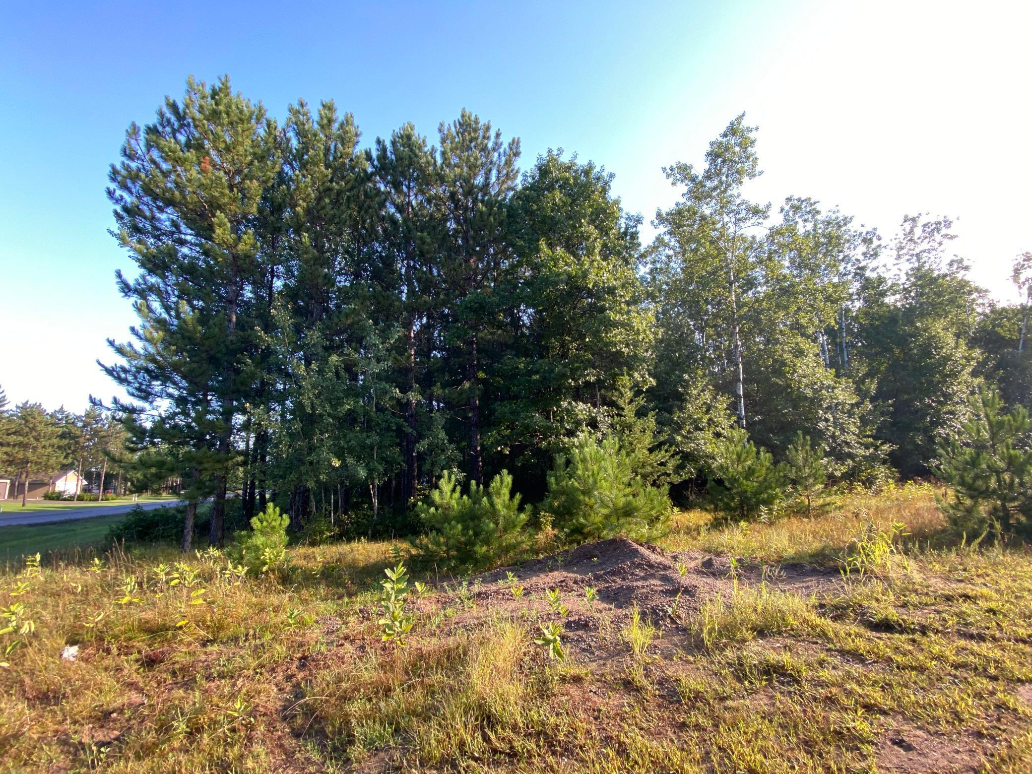 XXX Norway Spruce Property Photo - Baxter, MN real estate listing