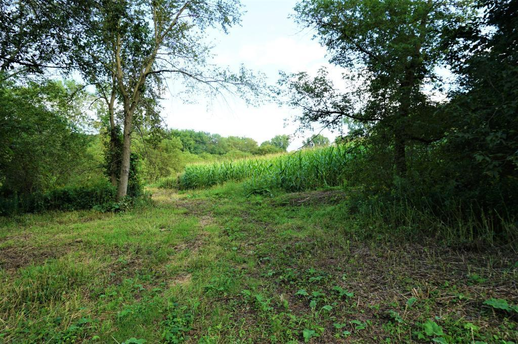 49.08 Acres With Plum Creek! Real Estate Listings Main Image
