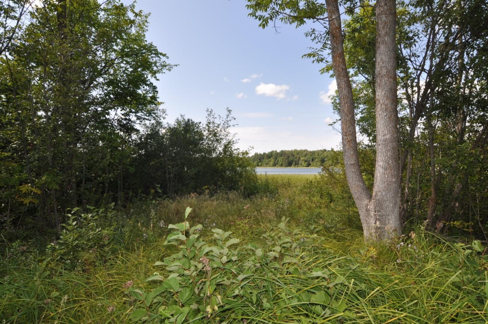 TBD County 49 Property Photo - Akeley, MN real estate listing