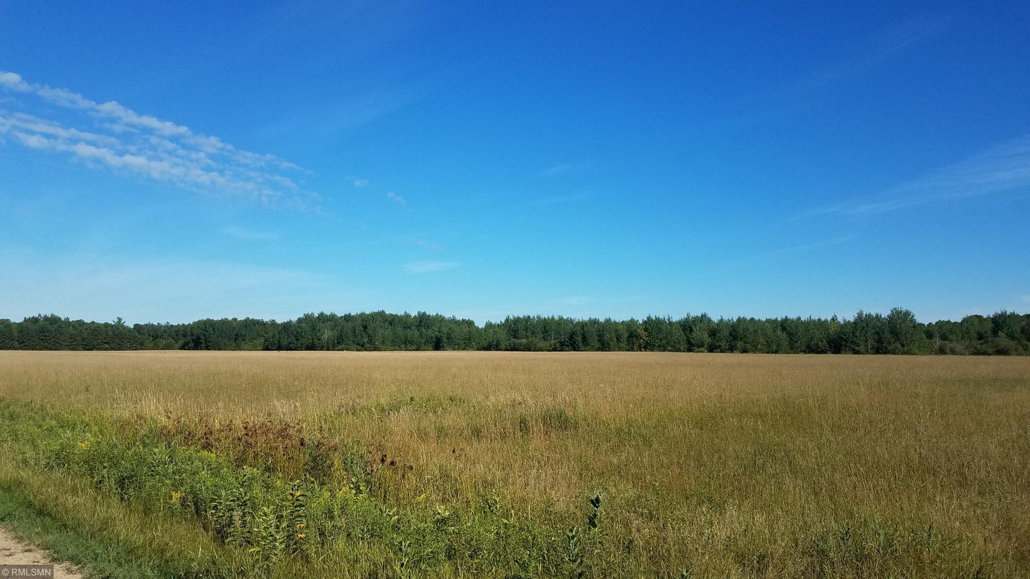 xxx Leisure Drive Property Photo - Cushing, MN real estate listing