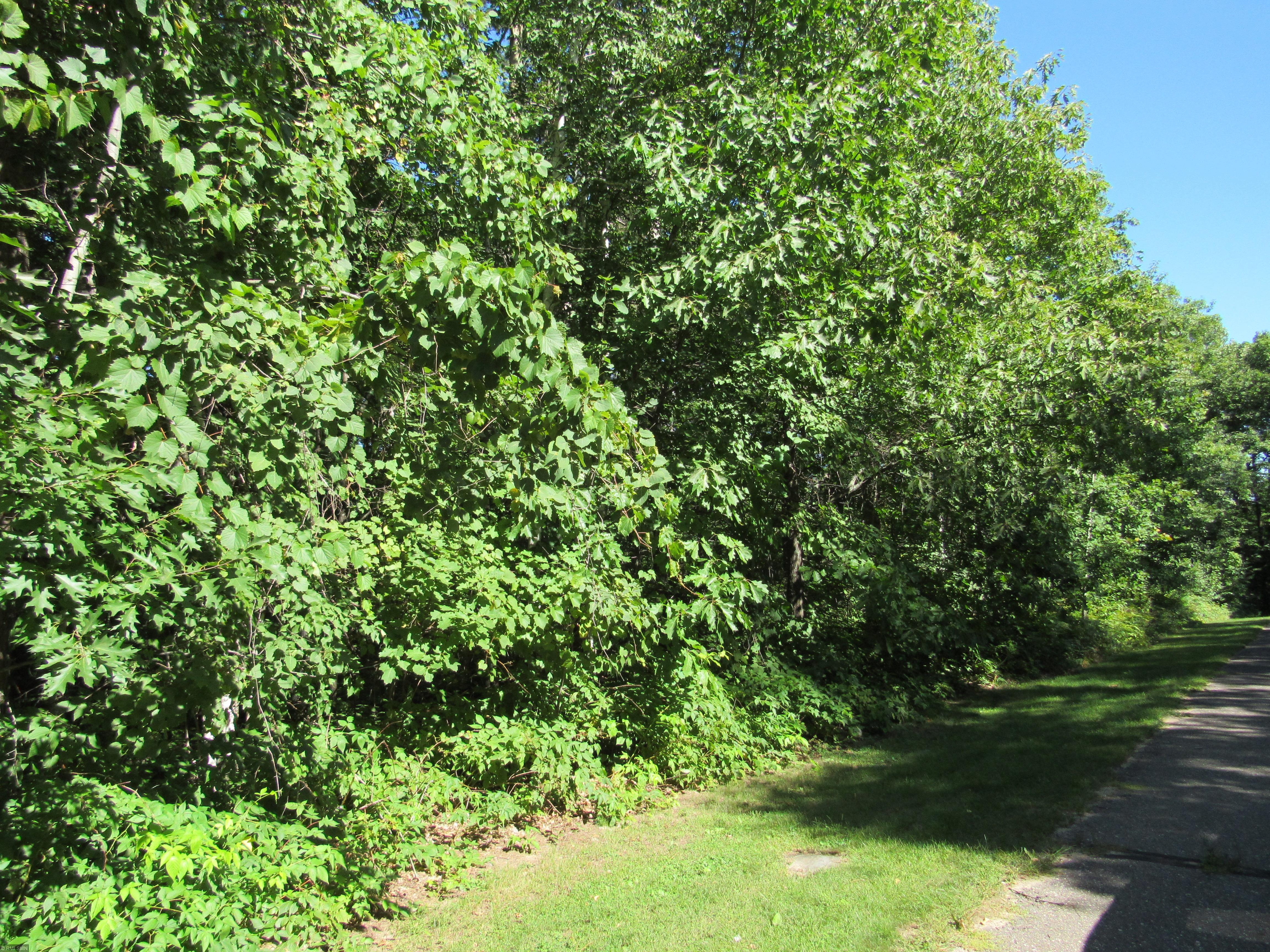TBD SW Gull Lane Property Photo - Fairview Twp, MN real estate listing