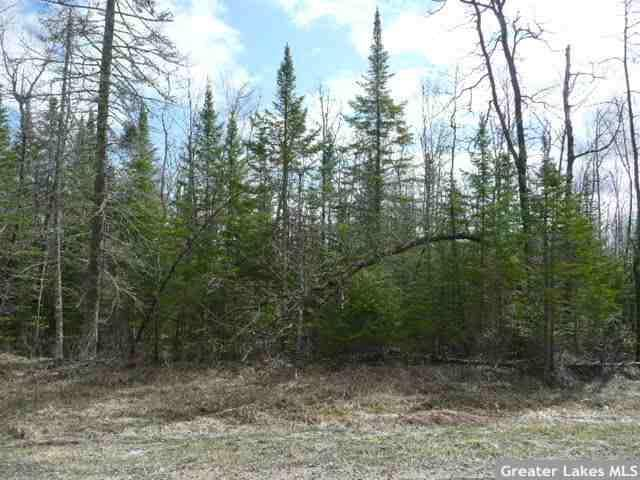 TBD Natures Trail Property Photo - Federal Dam, MN real estate listing