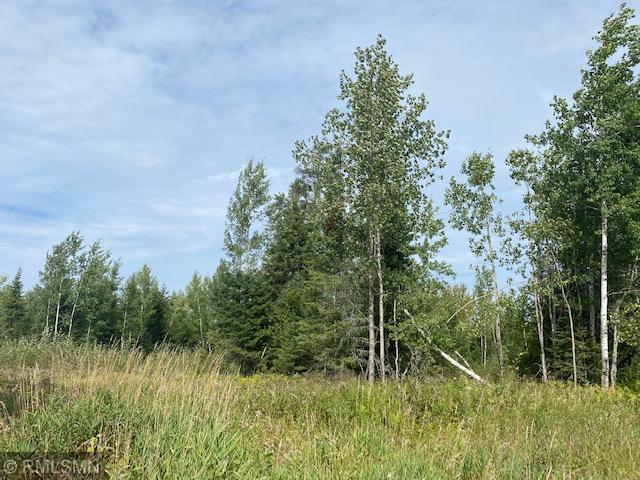 XXX Salo Road Property Photo - Waasa Twp, MN real estate listing
