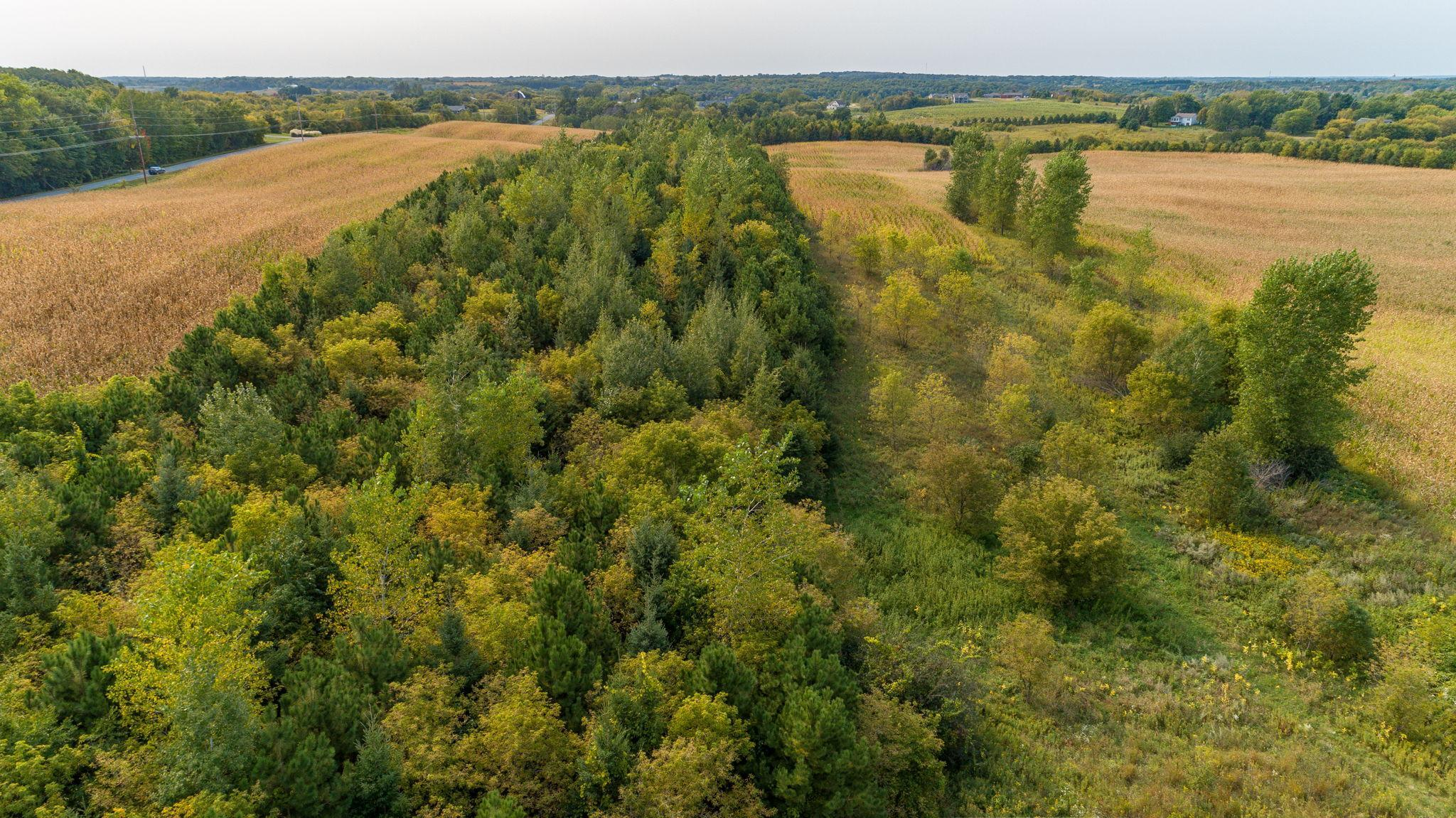 XXX 85th Street Property Photo - Somerset, WI real estate listing