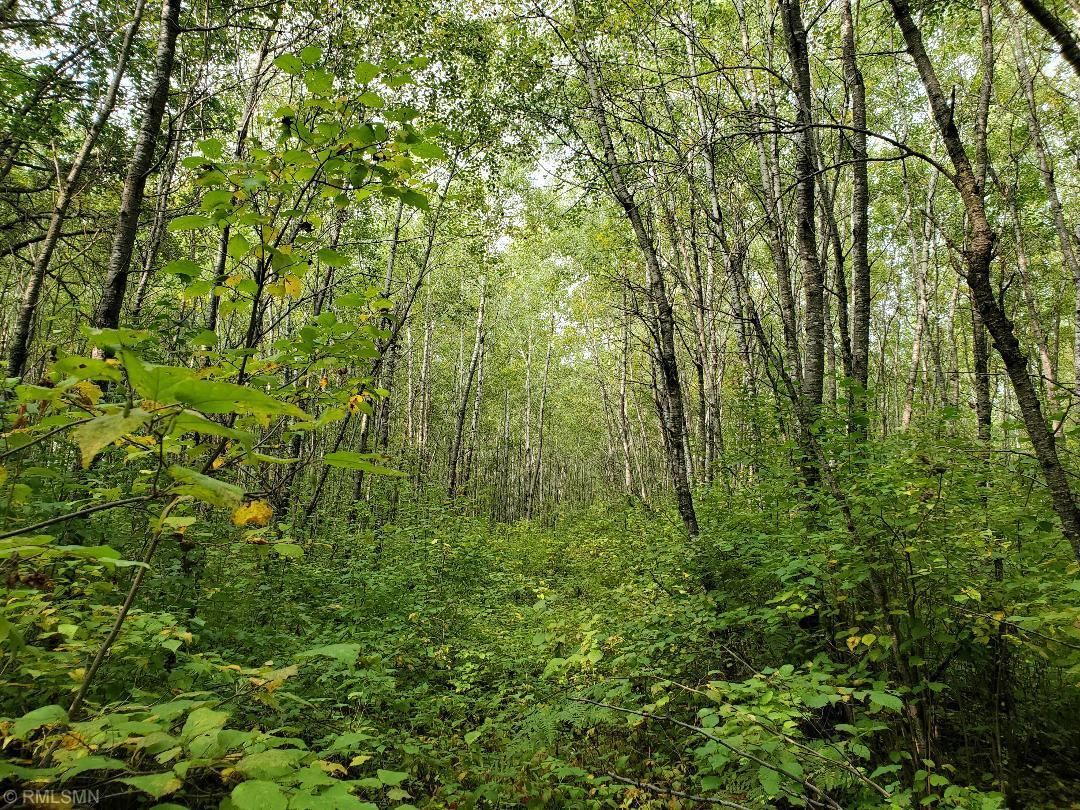 XXX Lester Road Property Photo - Springbrook, WI real estate listing