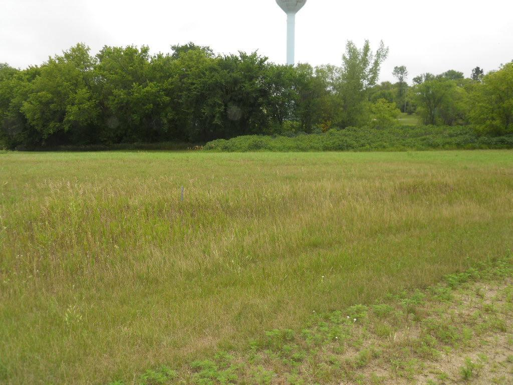 109 Hidden Meadows Drive Property Photo - Battle Lake, MN real estate listing