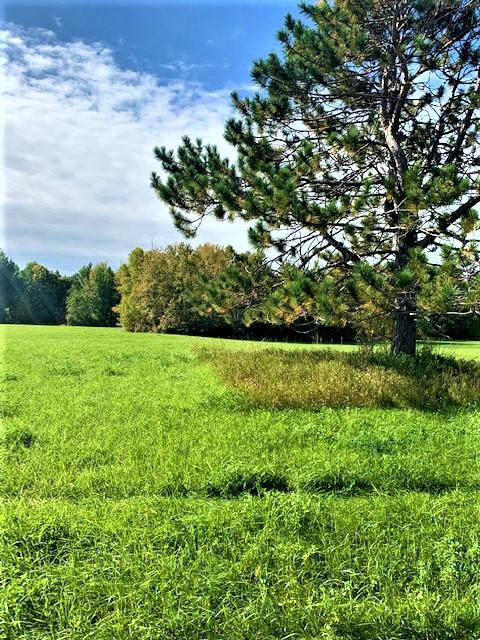 TBD TBD Property Photo - Cohasset, MN real estate listing