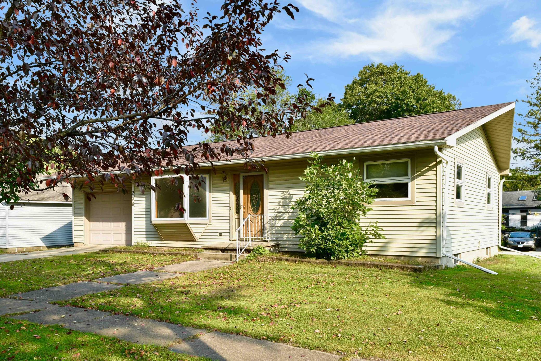 238 Park Street Property Photo - Peterson, MN real estate listing