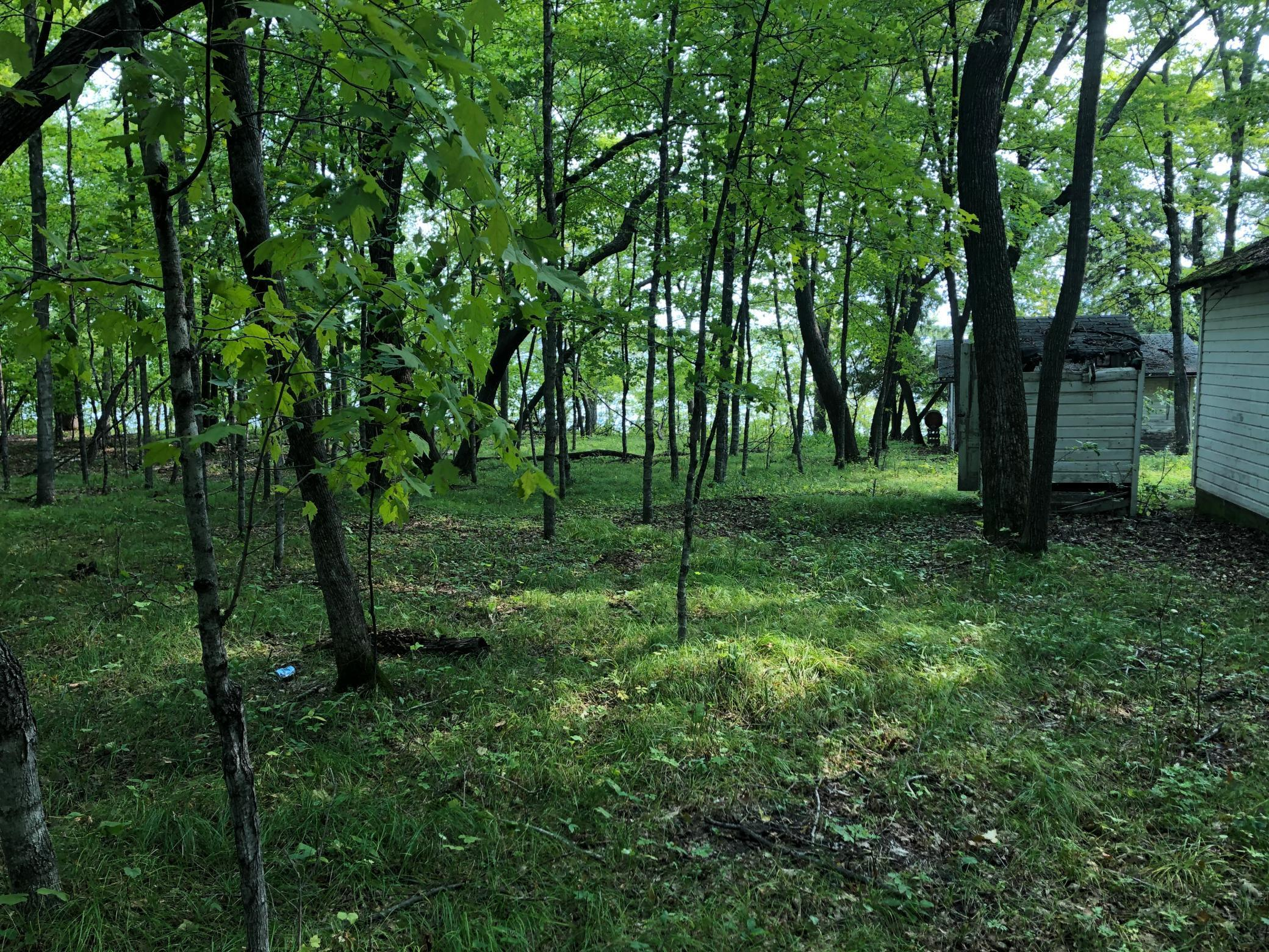 23642 Castle Trail Property Photo - Henning, MN real estate listing