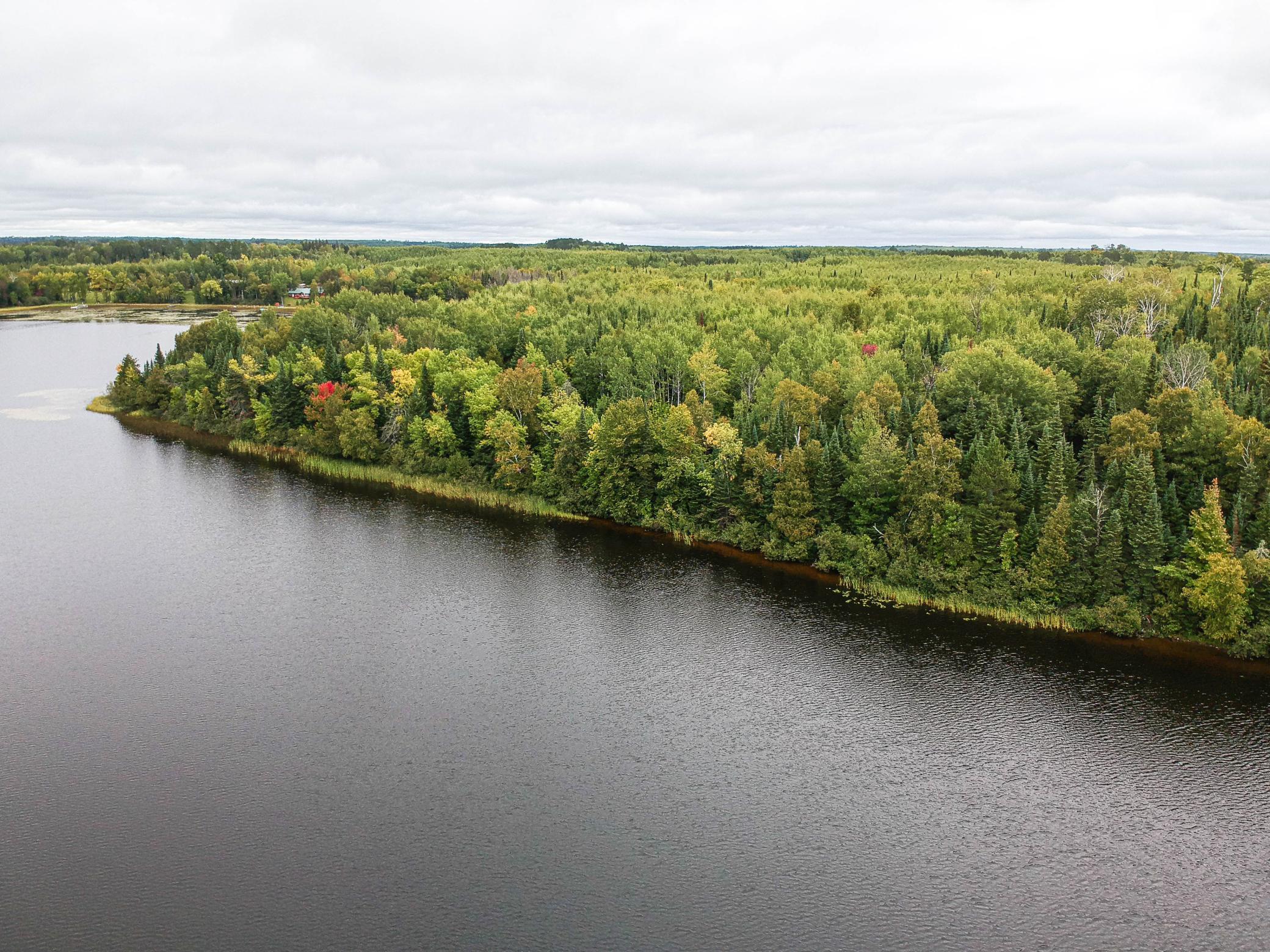 TBD Parcel A Co Road 341 Property Photo - Bigfork, MN real estate listing