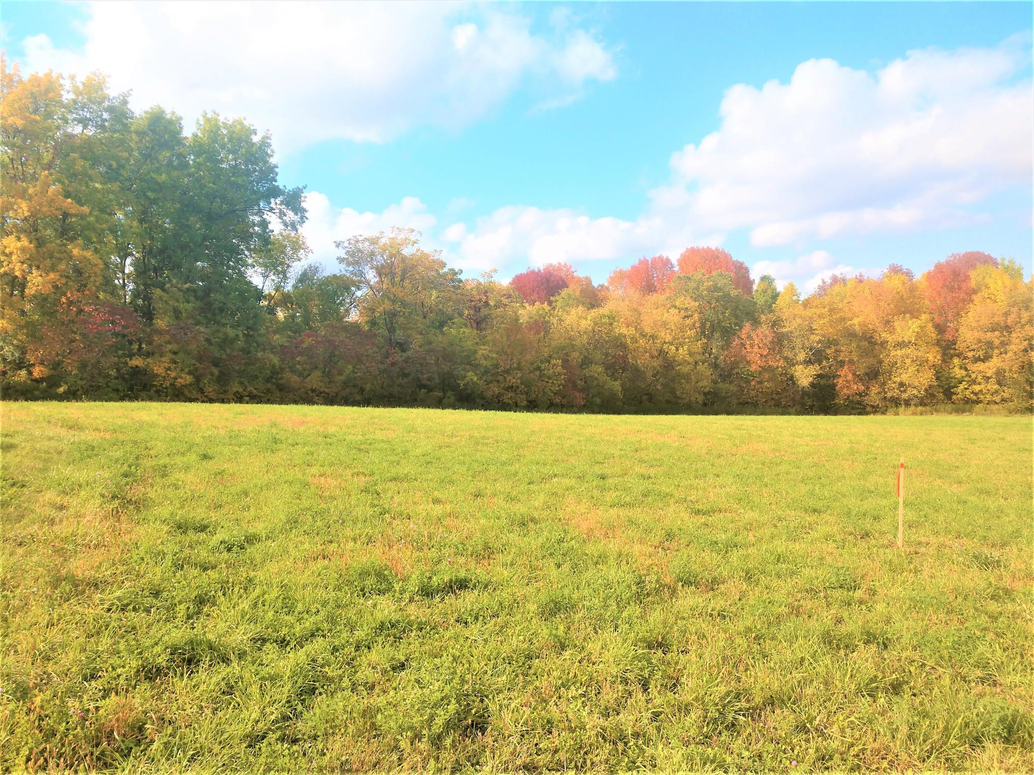 20.8 Acres 610th Avenue Property Photo - Ellsworth, WI real estate listing