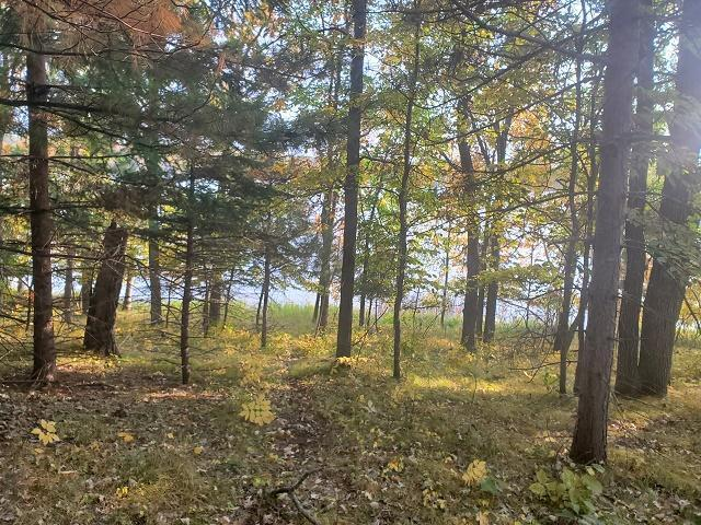 xxxx Ossawinnamakee Road Property Photo - Breezy Point, MN real estate listing