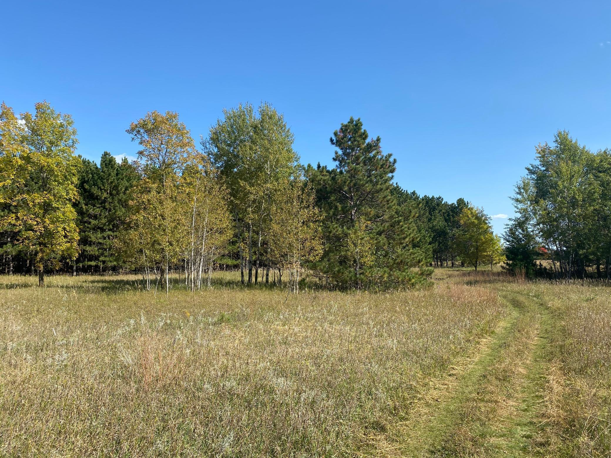 TBD TBD Property Photo - Browerville, MN real estate listing