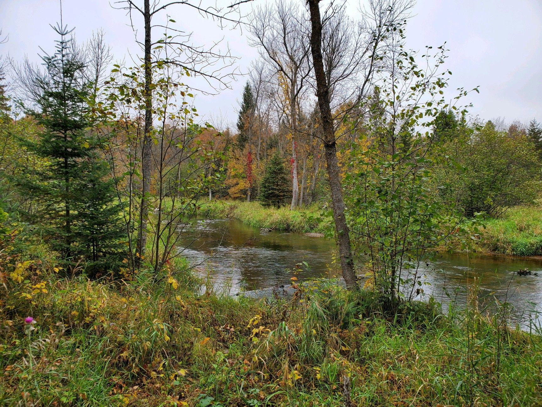 TBD County Road 152 Property Photo - Two Inlets Twp, MN real estate listing